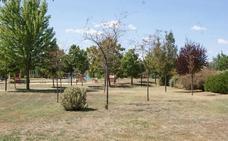 Arroyo solicita captar agua de riego para salvar los jardines del estado de sequía
