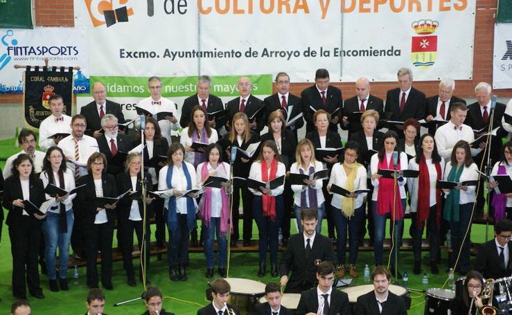 Concierto de Santa Cecilia en Arroyo (2/2)
