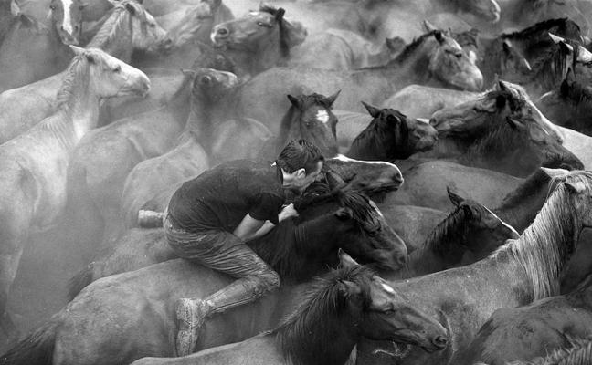 La Rapa das Bestas, fiesta tradicional gallega entre el hombre y el caballo
