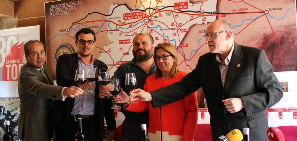 Un libro recoge la cultura de la vid y el vino en Toro desde hace 1.000 años