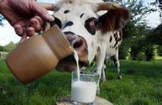 Una caída de la leche