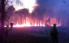 Un incendio en un pinar alcanza Navalilla y obliga a desalojar a treinta personas