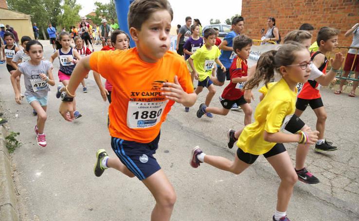 Las categorías inferiores compiten en la IV Legua en Autillo de Campos (Palencia)