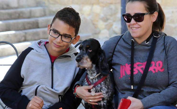 Marcha de Mascotas en Segovia