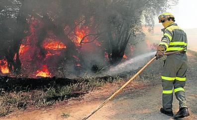 Sofocado un fuego en un vertedero junto a la azucarera de Monzón