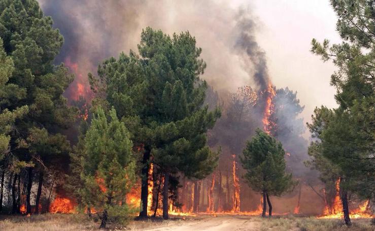 Incendio en Navalilla