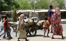 Naciones Unidas reparte 3.600 cabras a mujeres en el noreste de Nigeria