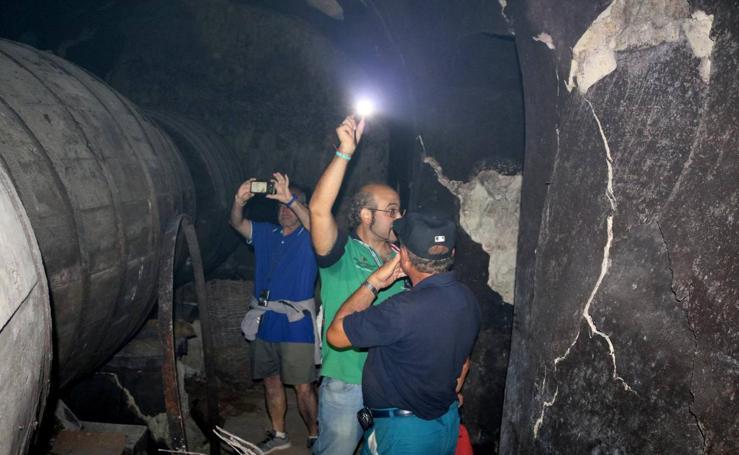 Visita a las bodegas de Dueñas