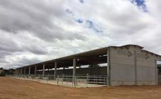Dehesa Grande abrirá un nuevo centro de tipificación de vacuno de carne