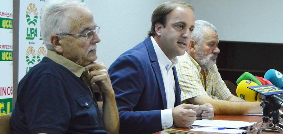 Unión de las principales fuerzas agrarias de Ávila por ayudas directas y seguros atractivos