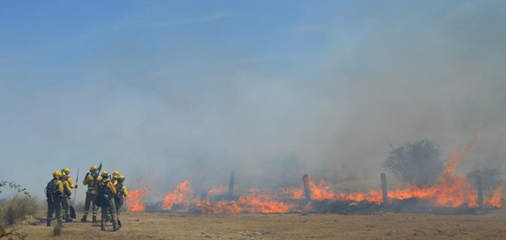 El fuego abrasa varias parcelas en Alamedilla