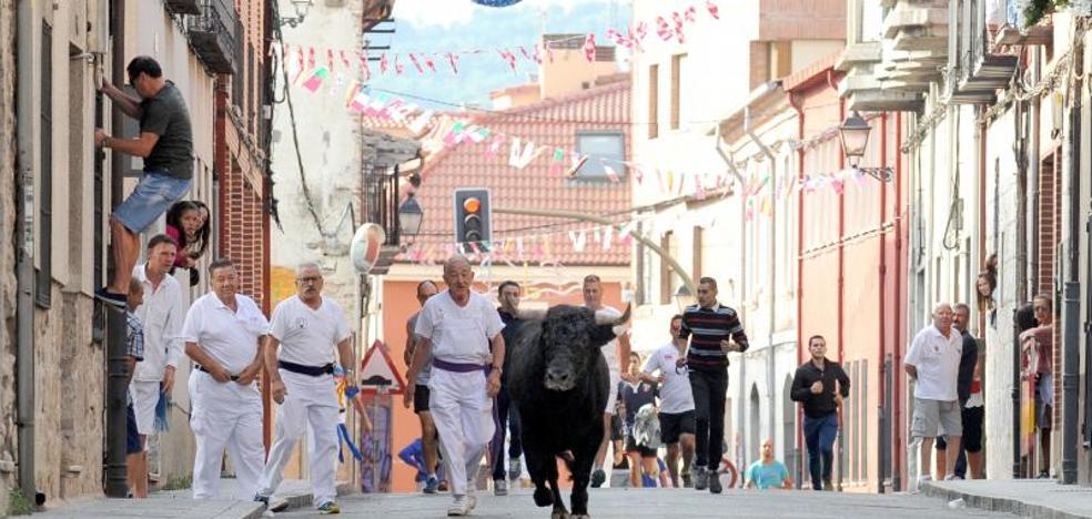 'El toro del Alba' da buen juego en el encierro de Tudela de Duero