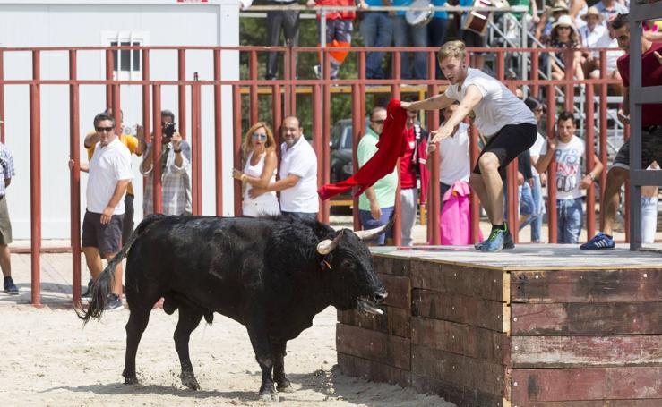 Encierro en las fiestas de Viana de Cega