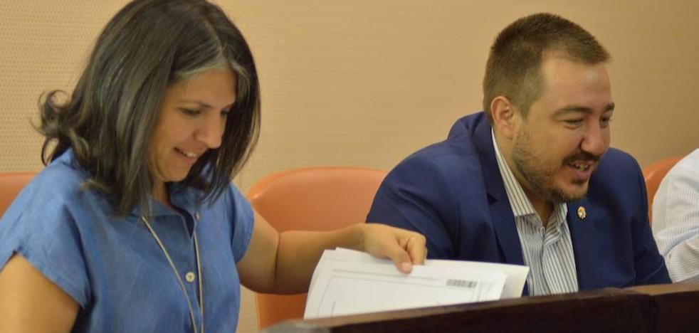 Los grupos minoritarios en la Diputación también piden un aula TEA en El Espinar