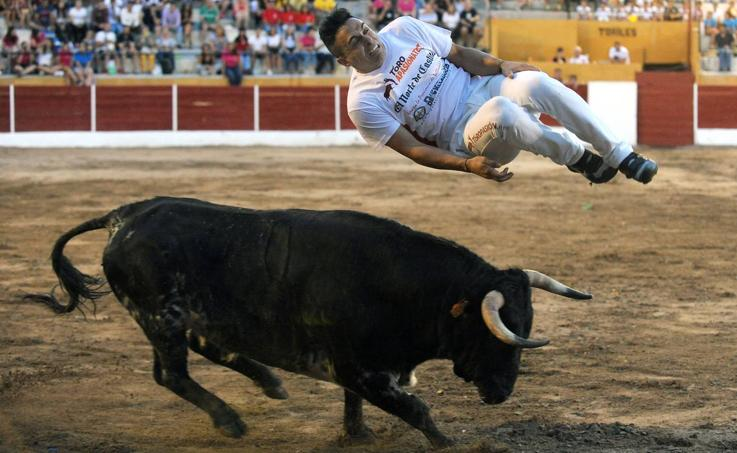 Concurso de cortes en Pollos (Valladolid)