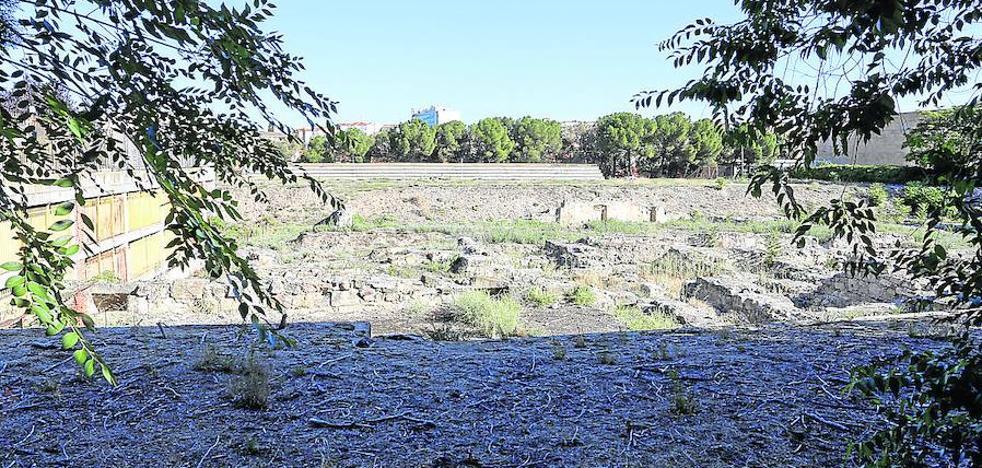 Podemos lamenta el desinterés de la Junta y la Universidad por los restos del Botánico