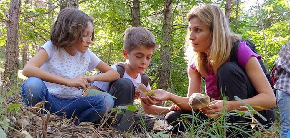 Los colegios pueden inscribirse ya en los planes de educación ambiental