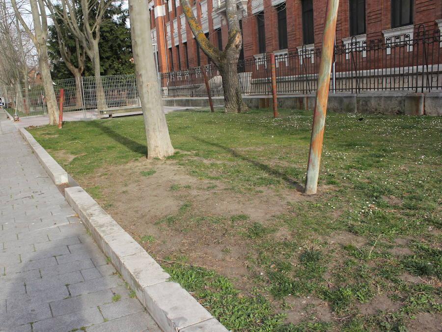 Palencia Ciudad Refugio denuncia ataques a dos mujeres árabes