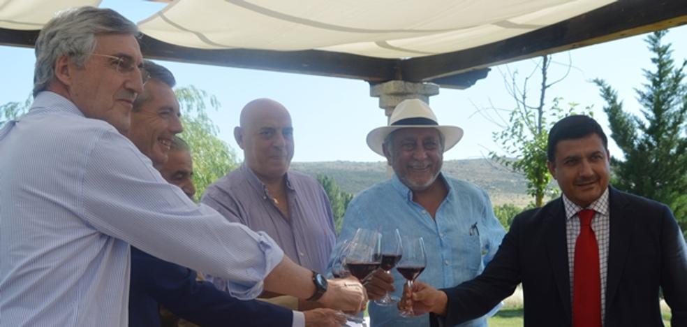 Piden una partida económica para impulsar la DOP Vino de Calidad de Cebreros