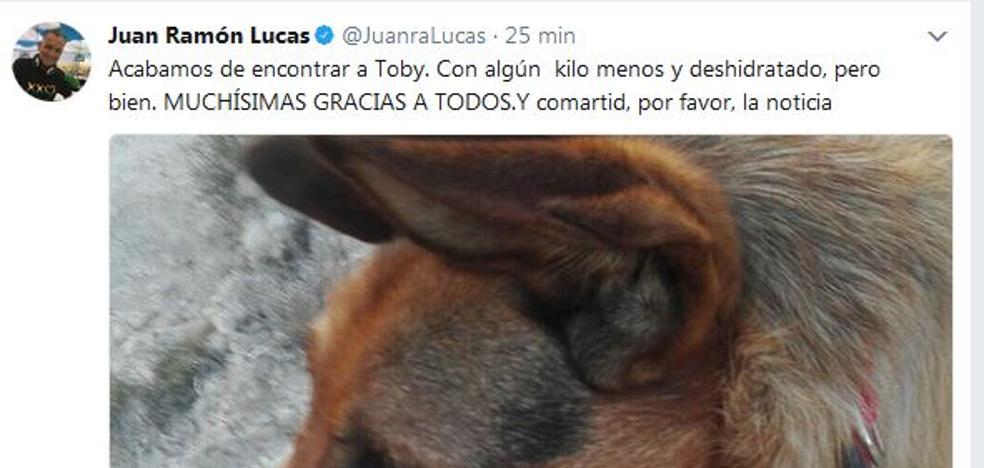 Juan Ramón Lucas pierde a su perro en Peñafiel y Twitter se vuelca para ayudarle