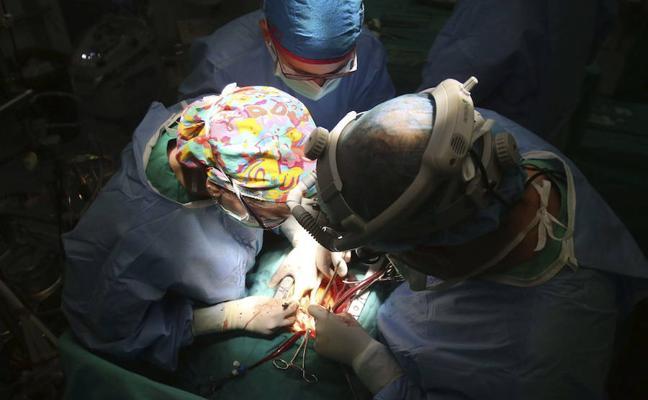 España revalida su liderazgo global en donaciones de órganos