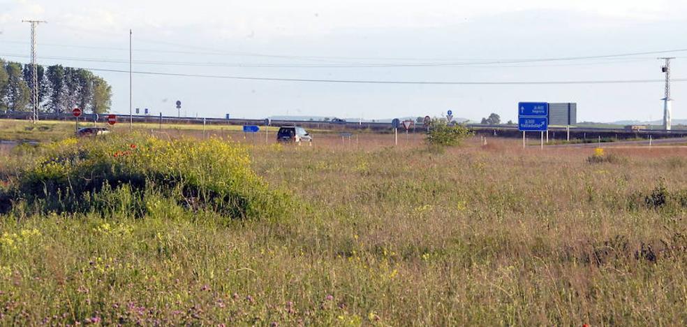Un exaccionista del Parque de Portillo asegura que la exviceconsejera dudó del proyecto
