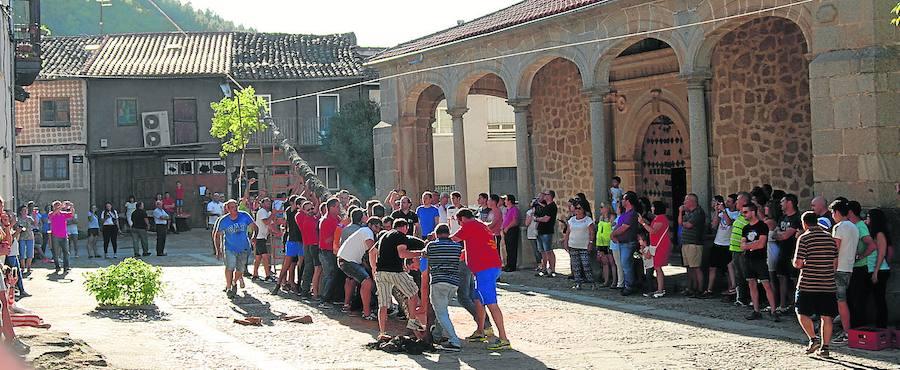 La corta y la quema del castillo centra el gran día de San Esteban de la Sierra