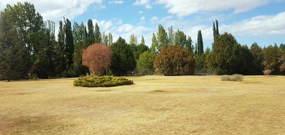 La caída de las temperaturas alivia la delicada situación de los parques