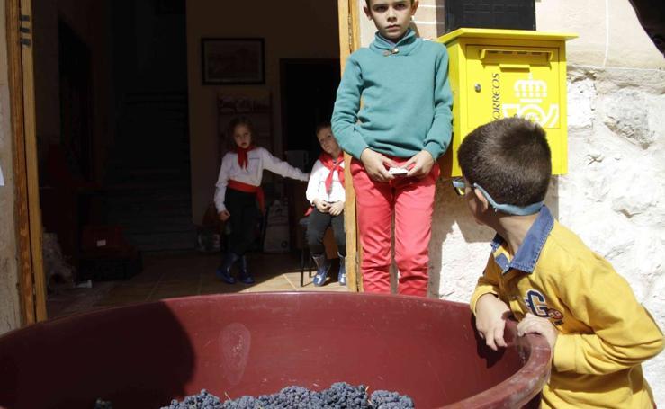 Fiesta de la vendimia en Curiel del Duero