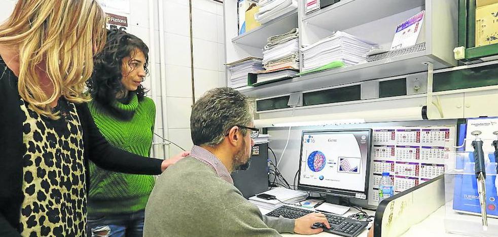 La Usal avanza al aumentar un 7% su volumen de publicaciones científicas