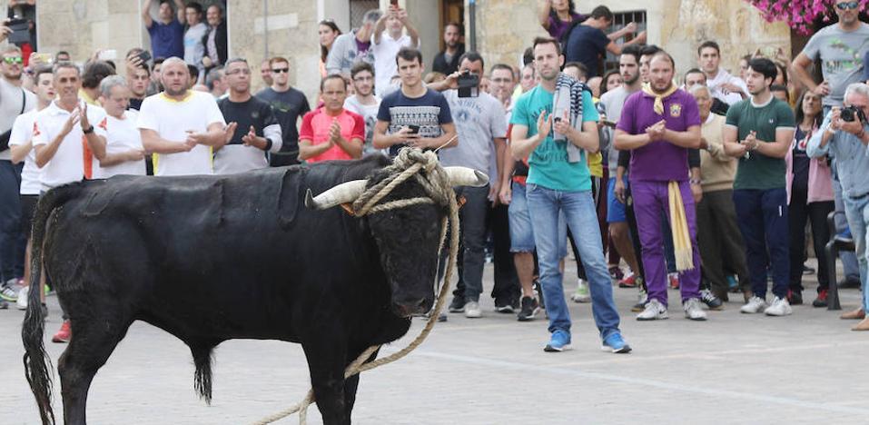 aplausos para el toro del pueblo