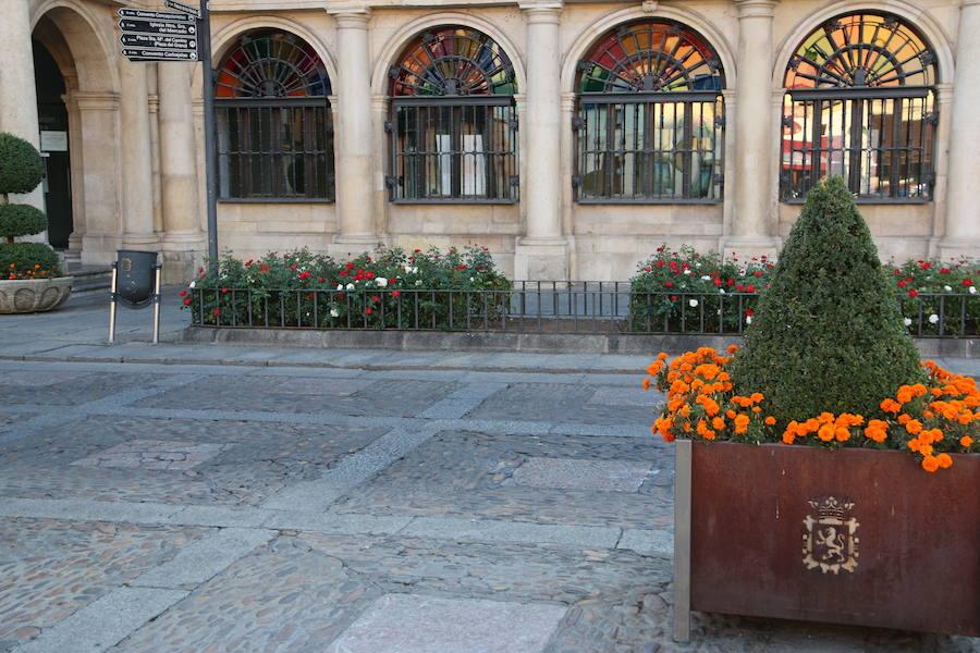 Lugar en el que se ubicará el busto de Alfonso V