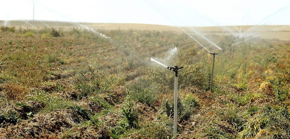 531.000 euros de multa a los regantes de Geria-Simancas por exceso de uso de agua para riego