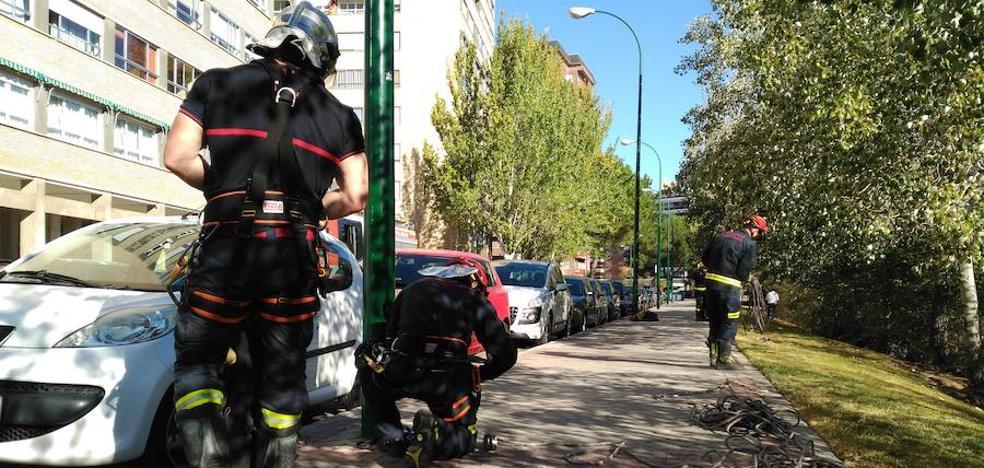 Hallan en el río el cuerpo de una mujer desaparecida el lunes en Valladolid