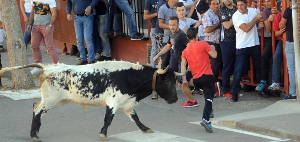 Rueda celebra el Toro de la Vendimia sin incidentes