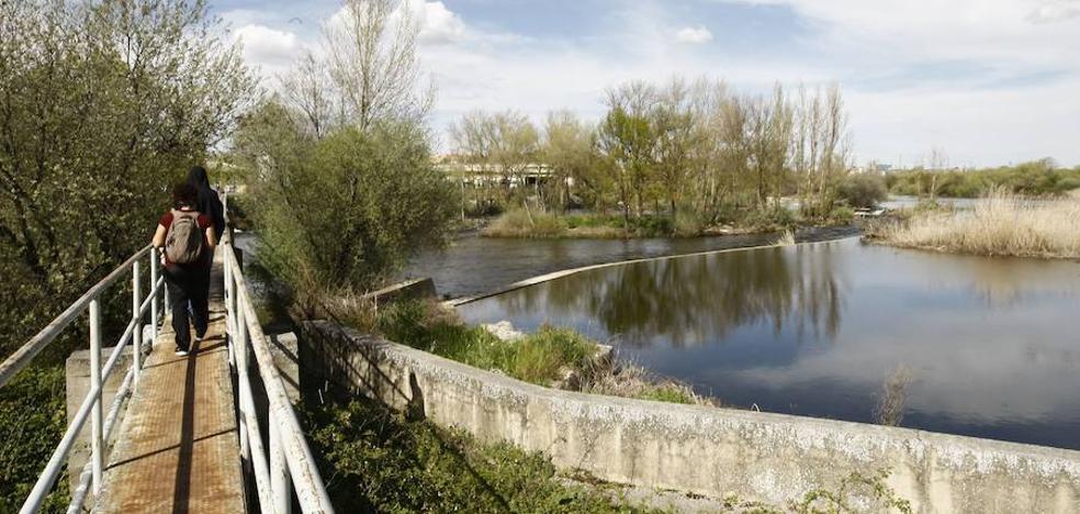 El Ayuntamiento expropia terrenos para desarrollar el proyecto Tormes+