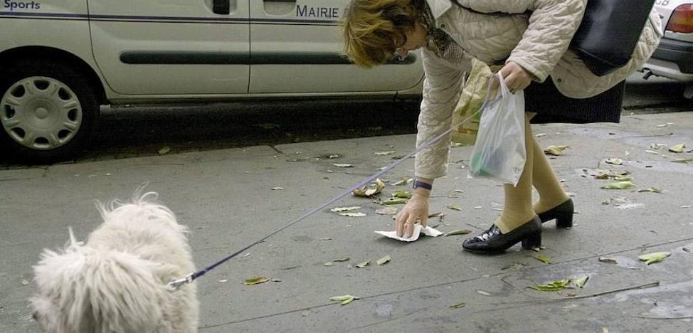 Guerra a las cacas de perro en la calle: ADN canino y multas de 200 euros