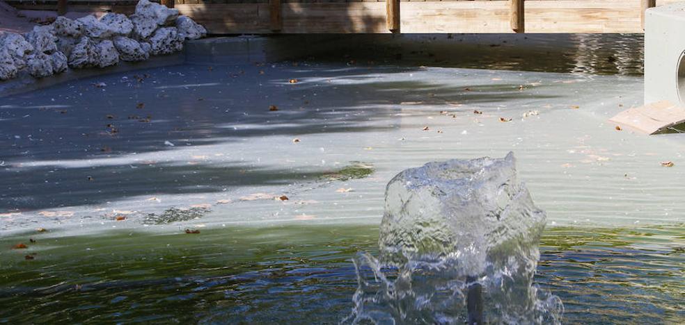 El estado del estanque de La Alamedilla desata una oleada de críticas