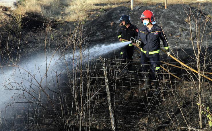 Incendio junto a la carretera de La Granja