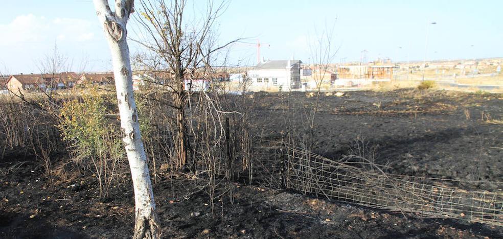 Una colilla mal apagada, posible causa del fuego al borde de la CL-601