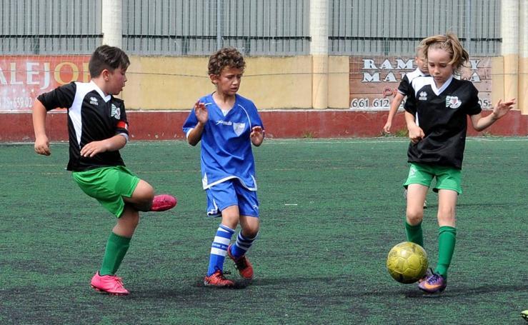Deporte Base del 7 y 8 de octubre. Valladolid (1/2)