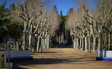 Huesca, una tierra de historia, leyendas y exquisita gastronomía