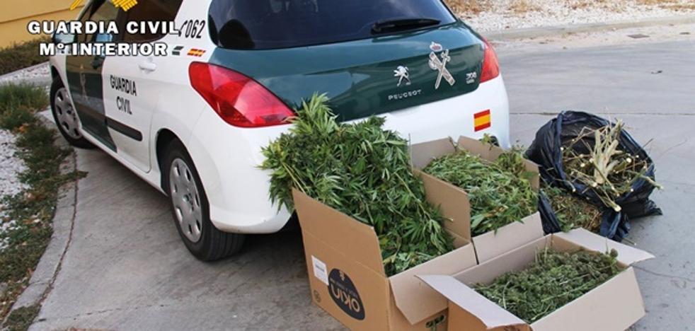 320 kilos de marihuana interceptados y tres personas detenidas