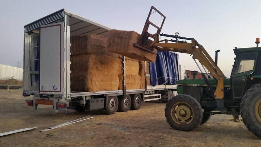Dona 16 toneladas de paja para el ganado afectado por los incendios de Galicia