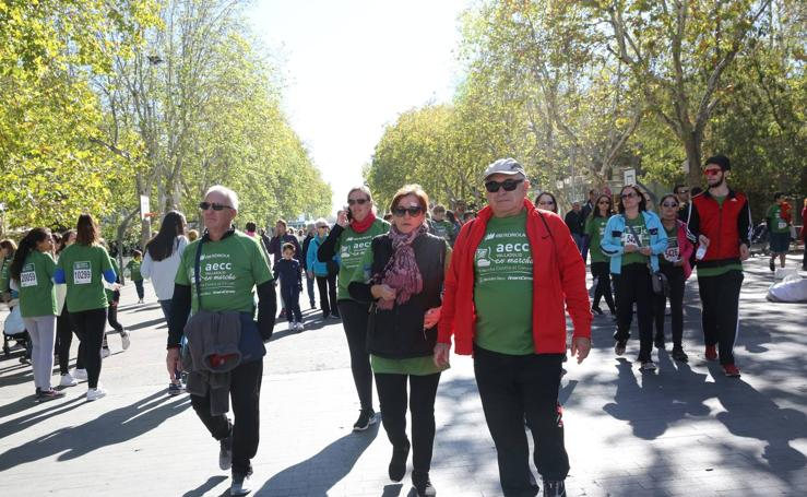 VI Marcha Valladolid Contra el Cáncer (9/12)