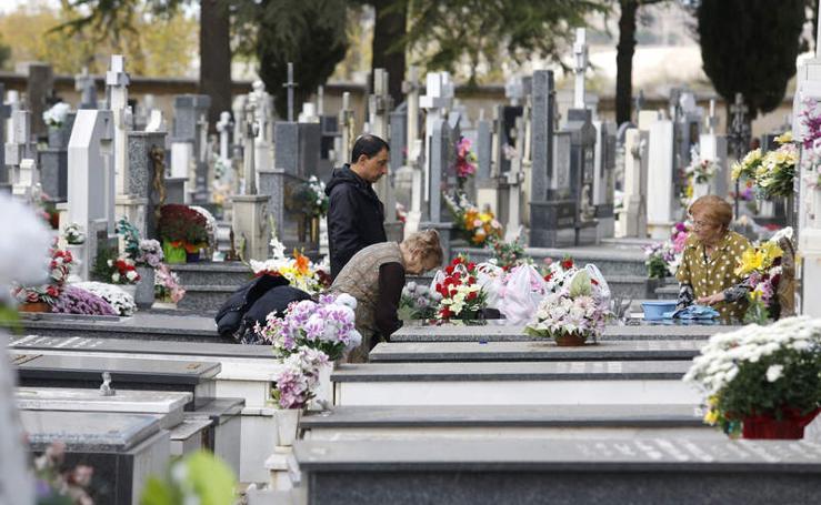 El cementerio de Palencia se engalana para el Día de todos los Santos