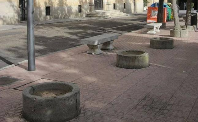 Piden la reposición de todos los árboles que ha perdido la plaza de Los Bandos