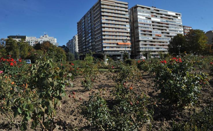 Los efectos de la sequía en los jardines públicos de Valladolid