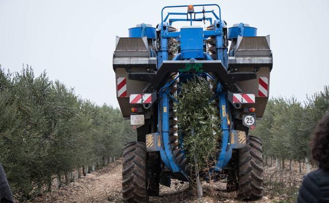 Herrera apoya en Rioseco la diversificación de los cultivos