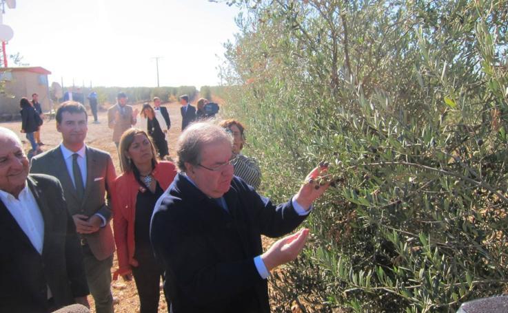 Juan Vicente Herrera visita las instalaciones del Grupo Valdecuevas en Medina de Rioseco
